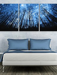 E-HOME® Stretched LED Canvas Print Art Forest And Sky Flash effect LED Set of 3