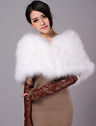 Fashion Ostrich Fur Evening/Casual Shawl