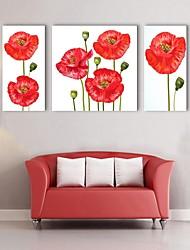 e-FOYER toile tendue art décoratif fleurs rouges ensemble de trois de peinture
