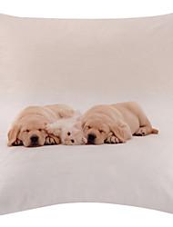 belle chiot de velours motif taie d'oreiller décoratif