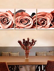 E-HOME® Stretched Canvas Art Rose Decoration Painting Set of 3