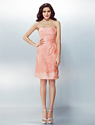 Formal Evening Dress - Pearl Pink Plus Sizes / Petite Sheath/Column Strapless Knee-length Lace