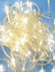 EU Plug Waterproof 10M 100LED Warm White Light LED Christmas Light Decoration String Light With Tail Plug (220V)