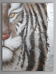 Oil Painting Modern Abstract Tiger Hand Painted Canvas with Stretched Frame