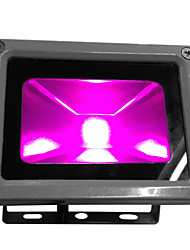 Waterproof 10w led plant grow light