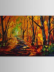 iarts pintura a óleo paisagem parque avenida de mão telas pintadas modernos, com quadro esticado