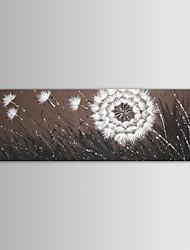 iarts peinture à l'huile de fleurs paysage moderne vol aléatoire pissenlit main toile peinte avec cadre étiré