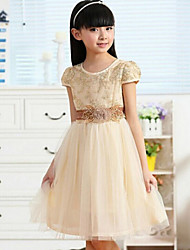 Girl's Spring Short Sleeve O-neck Dresses