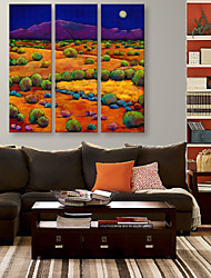 E-HOME® Stretched Canvas Art The Color of The Fields And Mountains Decorative Painting  Set of 3