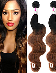 """3 Pcs/Lot 12""""-26"""" 100% Malaysian Unprocessed Virgin Human Hair #1B-30 Color Ombre Body Wave Hair Weaves"""