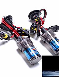 HB4 12V 55W Xenon Hid Replacement Light Bulbs 10000k