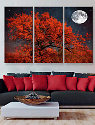 E-HOME® Stretched Canvas Art The Red Tree Decoration Painting  Set of 3