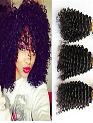 3Pcs/Lot Brazilian Hair Bundles Unprocessed Kinky Curly Hair Weaves Brazilian Virgin Hair weaves