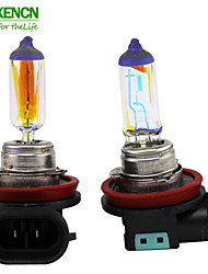 XENCN H11 12V 70W 2300K Golden Eyes Automotive Super Yellow Light Halogen Car Bulbs Fog Lamp