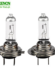 New Design 3 Sets True Focus H7 12V 65W 80% More Bright Type Automotive Halogen lamps for Taxi