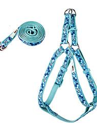 Chien Harnais Bleu Nylon