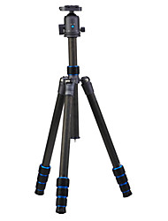 NEST®NT-6294CK travel pure carbon fiber DSLR digital camera tripod