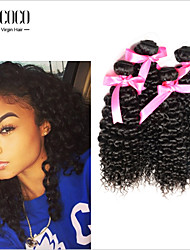 3Pcs/lot 8''-30'' 6A Grade Top Selling Kinky Curly For African American Virgin Malaysian Hair Weave