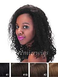 2015 New 10''-24'' Kinky Curly 100% Chinese Virgin Human Hair Wigs Full Lace Wigs With Baby Hair For Blacek Women
