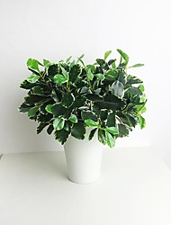 "11.8"" Green and White Artificial Plant Polyscias 1 Bunch"