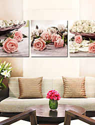 Prints Poster Wall Art Painting Pictures Print On Canvas  3pcs/set (Without Frame)