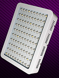 MORSEN® 100W 11000LM LED Grow Lamps for Flowering Plant and Hydroponics System (European plug)