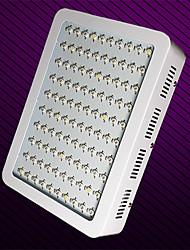 morsen® 11000lm 100w mené élèvent lampes pour plantes à fleurs et système de culture hydroponique (prise européenne)