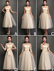 Mix & Match Dresses Tea-length Tulle and Lace 6 Styles Bridesmaid Dresses (3789962)