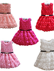 2015 Retail  Kids Girl Formal Dress Cute Girl Princess Wedding Party Dress For Girl 3-8 Years Evening Dresses