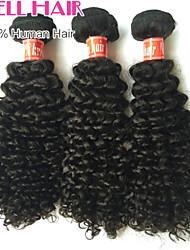 Cheap Brazilian Virgin Hair Kinky Curly Human Hair 3 Bundles 12'-26' Inches Natural Black