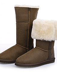 Zapatos de mujer - Plataforma - Plataforma / Botas de Nieve / Punta Redonda - Botas - Exterior / Casual / Deporte - Lana - Marrón