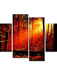 VISUAL STAR®Autumn Group Stretched Canvas Printing High Quality Wall Art For Decor