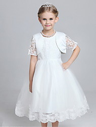 A-line Knee-length Flower Girl Dress - Cotton / Lace / Tulle / Polyester Short Sleeve Jewel with