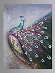 Animal / Fantasia Impressão em tela Um Painel Pronto para pendurar , Vertical