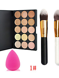 15 Concealer + Concealer Make-up Pinsel Trocken / Matt Gesicht Concealer China Others