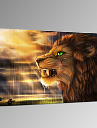VISUAL STAR®Lion Photo Giclee Canvas Print Animal Wall Picture For Home Decor Ready to Hang
