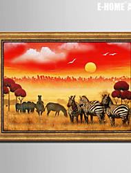 E-HOME® Framed Canvas Art, Zebra on The Grassland Framed Canvas Print One Pcs