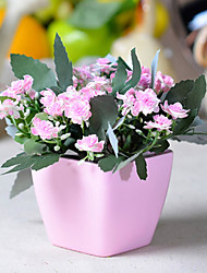 Silk Flowers Plastic Flower Blossoms Polyester Others Artificial Flowers