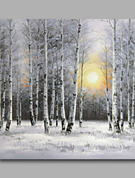 Ready to Hang Stretched Hand-Painted Oil Painting Canvas Wall Art Silver Birch Forest Trees Snow Modern One Panel