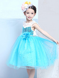 Girl's Cotton Summer Flower Decoration Cinderella Full Dress