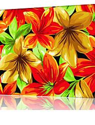 DIY digitales Ölgemälde Frame Familie Spaß Malerei alle von mir Lily x5056