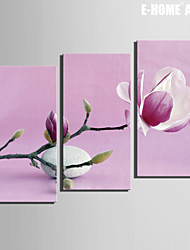 E-HOME® Stretched Canvas Art Stones And Flowers Decoration Painting  Set of 3