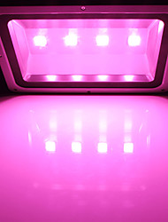 MORSEN®Low Price  600W  Hydroponic Plant Flood LED Grow Lights led floodlight Super Bright