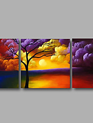 Ready to Hang Stretched Hand-Painted Oil Painting Canvas Wall Art Trees Clouds Sunrise Modern Three Panels