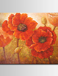 Hand-Painted Red Poppies of Toscano Oil Painting , Canvas One Panel