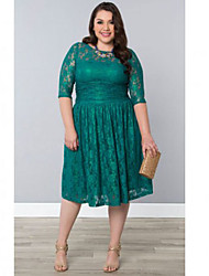 Women's Vintage Lace Swing Dress , Round Neck Knee-length Spandex