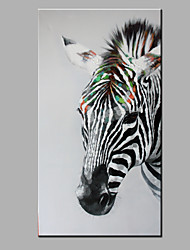 Single Modern Abstract Pure Hand Draw Ready To Hang Decorative The  Zebra Oil Painting