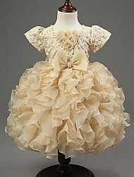 Ball Gown Knee-length Flower Girl Dress - Organza / Satin Sleeveless