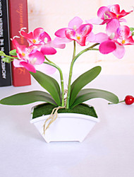 High-Grade Simulation Flower Suit Butterfly Orchid Home Decoration