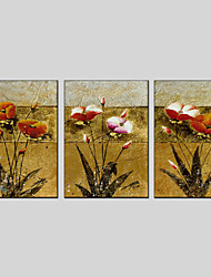 Stretched Canvas Oil Painting Flower Home Decorative Pictures 50*70CM*3PCS